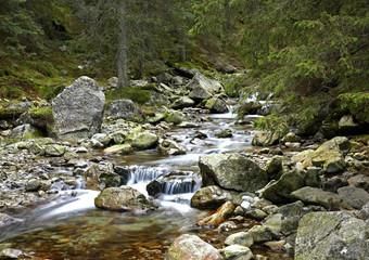 Roztoka river at Tatras near Zakopane. Poland