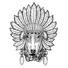 DOG for t-shirt design Wild animal wearing indiat hat with feathers Boho style vintage engraving illustration Image for tattoo, logo, badge, emblem, poster
