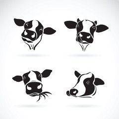 Vector group of a cow head design on white background. Farm Animal.