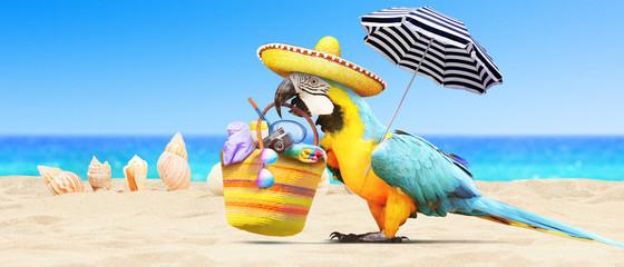 Papagei als Paradiesvogel am Strand - Urlaub Konzept