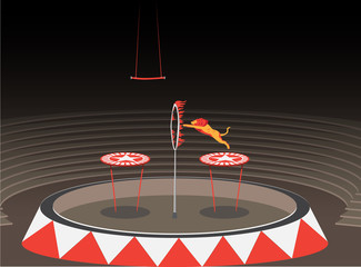 tiger jumping through a ring of fire. circus show