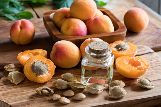 A bottle of apricot kernel oil with apricot kernels and apricots