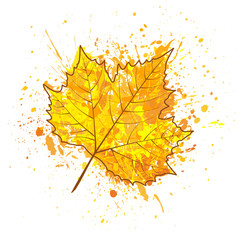 Autumn leaf of a tree and paint splashes, drops, blot