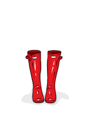 Beautiful rubber boots. Vector illustration for a postcard or a poster, print for clothes. Fashion, style and shoes.