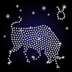 Sign of the zodiac Taurus is the starry sky