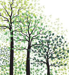 Green trees with leaves