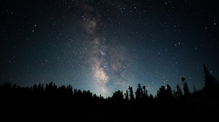 Clear view of the Milky Way photographed from the Rocky Mountains in Wyoming Fotomurales