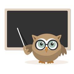 Owl teacher explaining at school on a white background