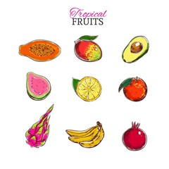 Tropical fruits vector