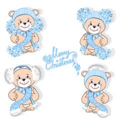 Teddy bear in hat set