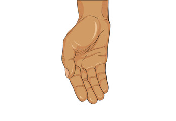 Gesture open palm. Hand gives or receives. Vector