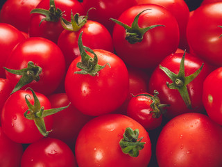 A side view, 45 degree angle view of a tray of bright red ripe tomatoes.