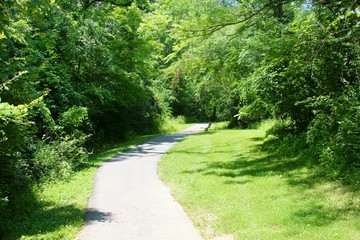 The winding path in the park.
