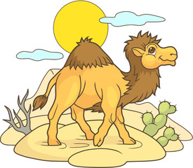 Cartoon cute camel walking through the desert