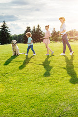 happy young family with golden retriever dog walking on green meadow in park
