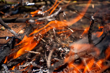 Ignite the fire. Macro shot of bonfire, white smoke, hot, glowing coal and fire. Burning branches and wood. Flames in fireplace, cozy home, warmth, love, romantic. Spring cleaning, gardening, picnic