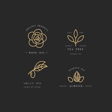 Vector set of packaging design templates and emblems in linear style - beauty and cosmetics oils - argan, rose, almond and tea tree