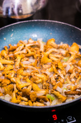 Chanterelle mushrooms in a pan