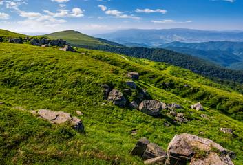 steep grassy meadow on hillside in mountains