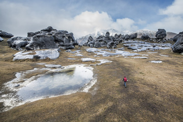 A woman hiking at Castle Hill near Arthur's Pass outside of Christchurch New Zealand.