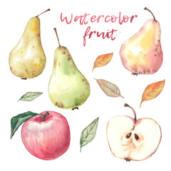 Set of fruits. Watercolor painting on white background.