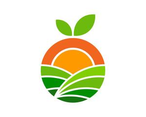 Farm Fruit Icon Logo Design Element