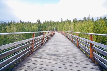 Path Through the Kinsol Trestle or Koksilah River Trestle in the Cowichan Valley