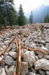 Lago di Dobbiaco 06/08/2017 dopo le frane