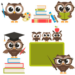 owls in the school