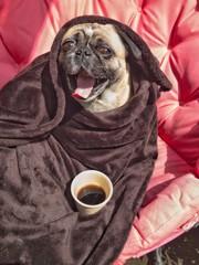 Guten Morgen - erst mal Kaffee