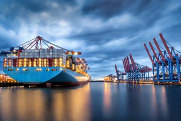 Container ships at the Hamburg Burchardkai