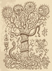 Mystic drawing with spiritual and christian religious symbols as snake, tree of knowledge and forbidden fruit on texture background