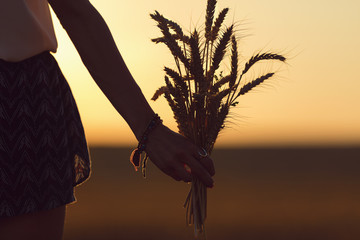 Modern girl holding wheat and enjoying the sunset in field.
