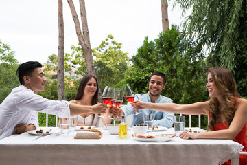 Side view of multiracial group of people toasting with wineglasses while having picnic party in garden.