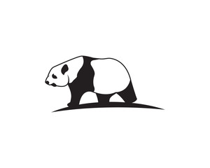 panda logo template vector illustration