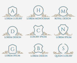 Decorative ornament text signs for luxury logo or classic signage with heraldry shields elements for royal logotypes vector illustration