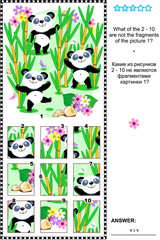 Panda bears visual logic puzzle: What of the 2 - 10 are not the fragments of the picture 1?  Plus same task text in Russian. Answer included.