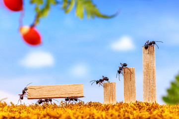 Ants carrying wood for business graph, teamwork concept