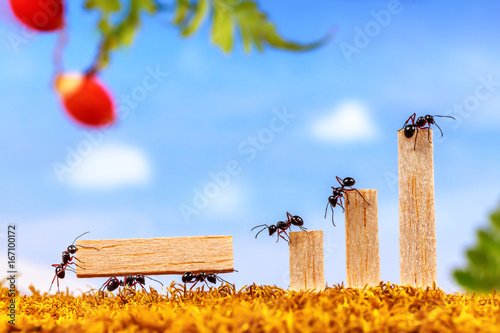 ants carrying wood for business graph teamwork concept. Black Bedroom Furniture Sets. Home Design Ideas