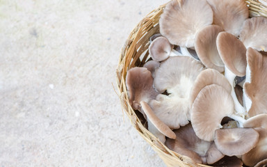 Selective focus of Organic mushrooms in wooden basket on cement floor with copy space