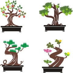 bonsai tree icon set on white background