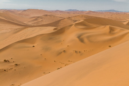 Top view from a dune in the middle of the Namib Dessert in the african country Namibia