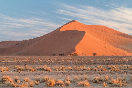 Red giant dune in the Namib dessert during sunset