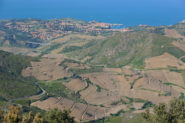 France Pyrenees-Orientales Collioure village and vineyards fields landscape, Mediterranean, seen from the heights, Vermilion coast, Roussillon
