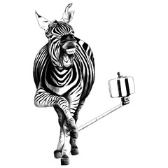 Zebra full height smiling taking a selfie with a monopod for phone sketch vector graphics black and white drawing