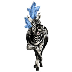 Zebra full height smiling with feathers on his head acts in the circus sketch vector graphics color picture
