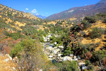 Sequoia National Park river valley, California, USA