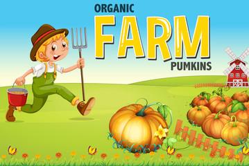 Farmer and pumpkin farm