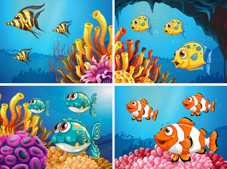 Fish swim under the ocean