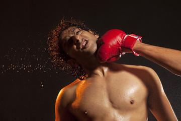 Boxer striking opponent